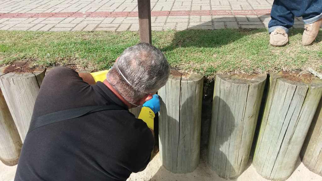 Saúde realiza ação para desratização da Orla