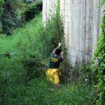 BOMBINHAS - Língua Negra fiscaliza ligações irregulares - Foto: Manuel Caetano