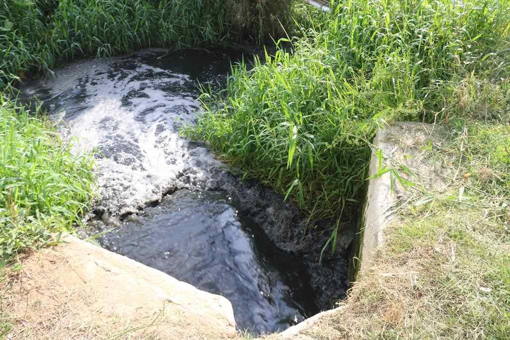 DENÚNCIA: Polícia investiga suspeita de despejo irregular em Itapema