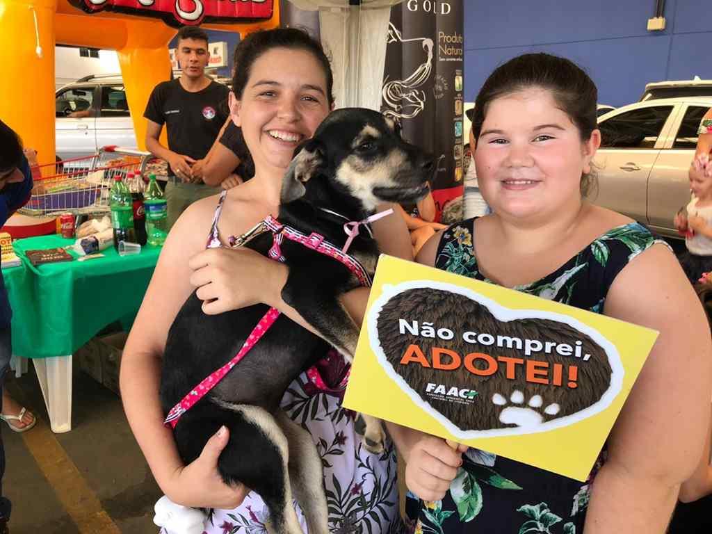 Mais de 20 animais são adotados na feira mensal de adoção da FAACI