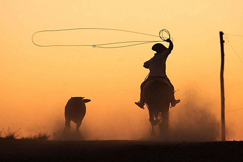 22º Rodeio Crioulo Nacional inicia nesta sexta-feira (12/04) em Itapema
