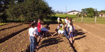 PORTO BELO - Alunos visitam Horto Municipal para incentivar alimentação saudável