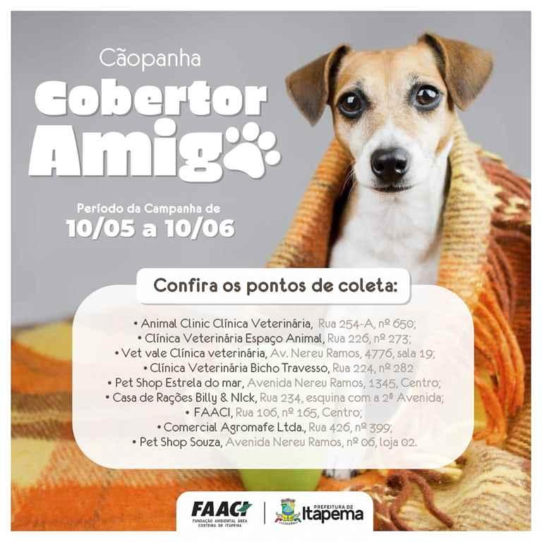 FAACI lança campanha para doação de cobertores para os animais
