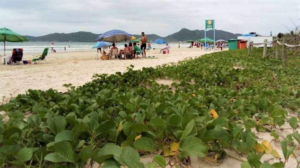 BOMBINHAS - Praia de Mariscal recebe atividade de Educação Ambiental