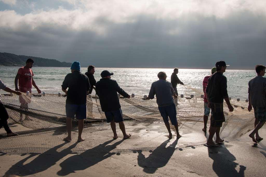 Expectativa é que o número ultrapasse as 86 toneladas pescadas em 2019 Créditos: Maycon Rodrigues