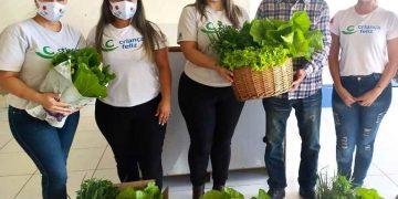 PORTO BELO - Secretaria de Agricultura de Porto Belo distribui verduras às famílias do Criança Feliz