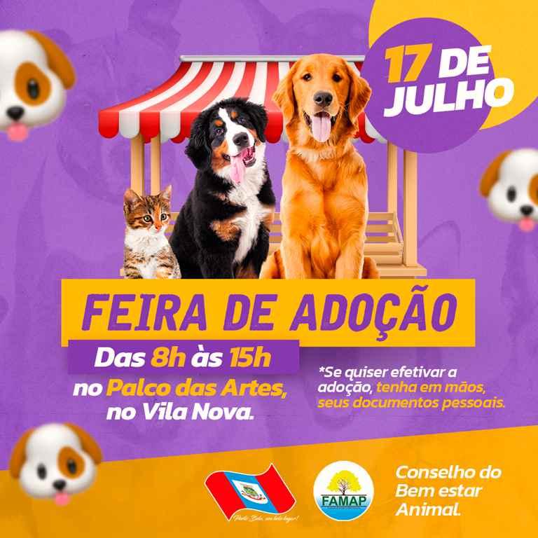 PORTO BELO - Porto Belo fará feira para doação de animais