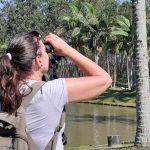 Itapema vai participar de Roteiro de Observação de Aves da região - Fotos:Curso de Observação de Aves da Costa Verde & Mar_Créditos Clóvis da Luz